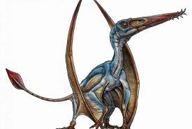 Pterosaur illustration by Gabriel Lío.