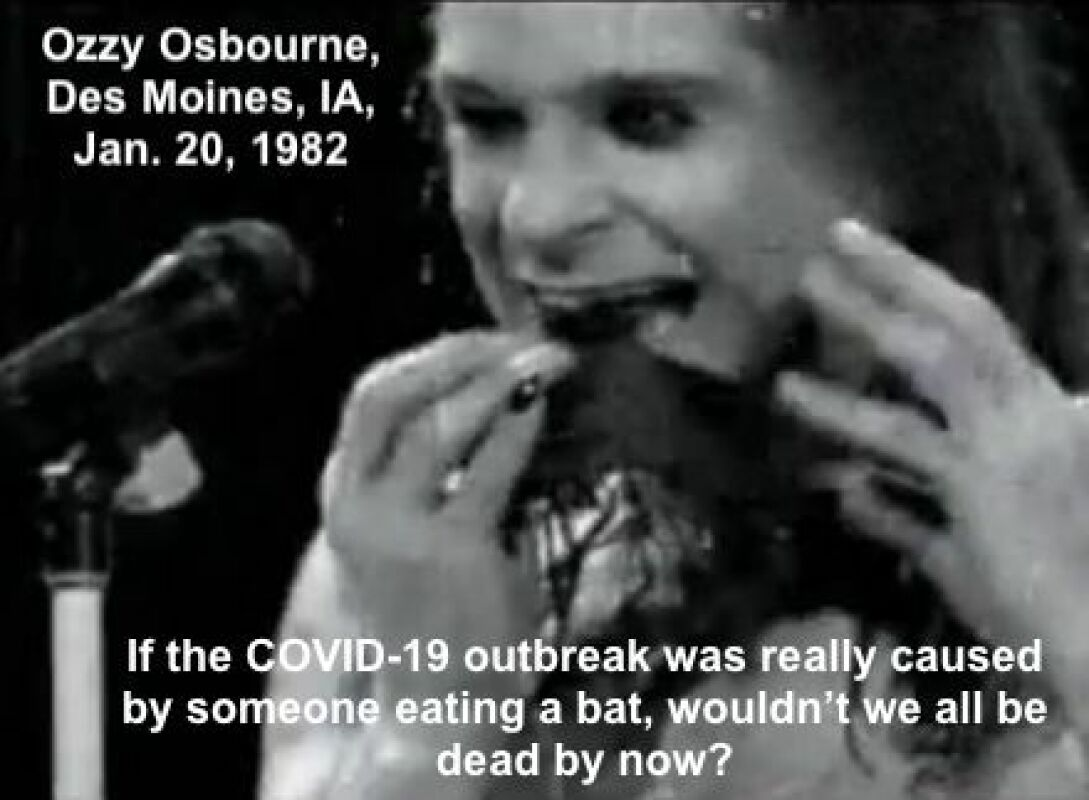 537648f72865fb6dbd2d0dfbae7be1ff Ozzy Osbourne Bat Des Moines Iowa Copy