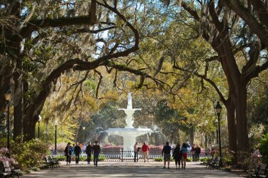 Forsyth Park 06 Large