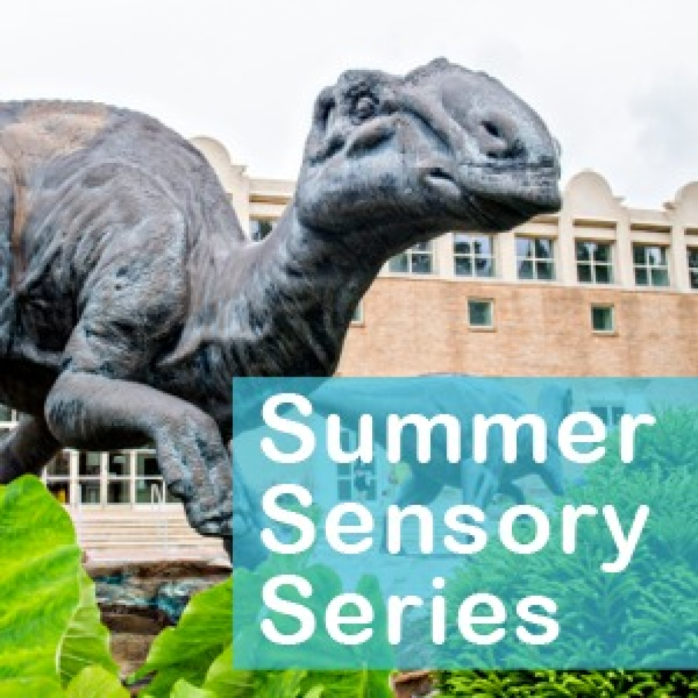 Summer Sensory Events Thumbnail