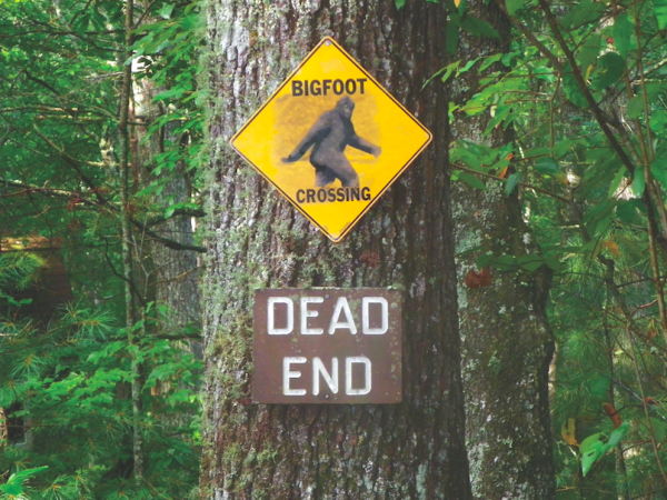 LOOK BOTH WAYS: Seeing Bigfoot may take you to a dead end. PHOTO CREDIT: William Hedgepeth.